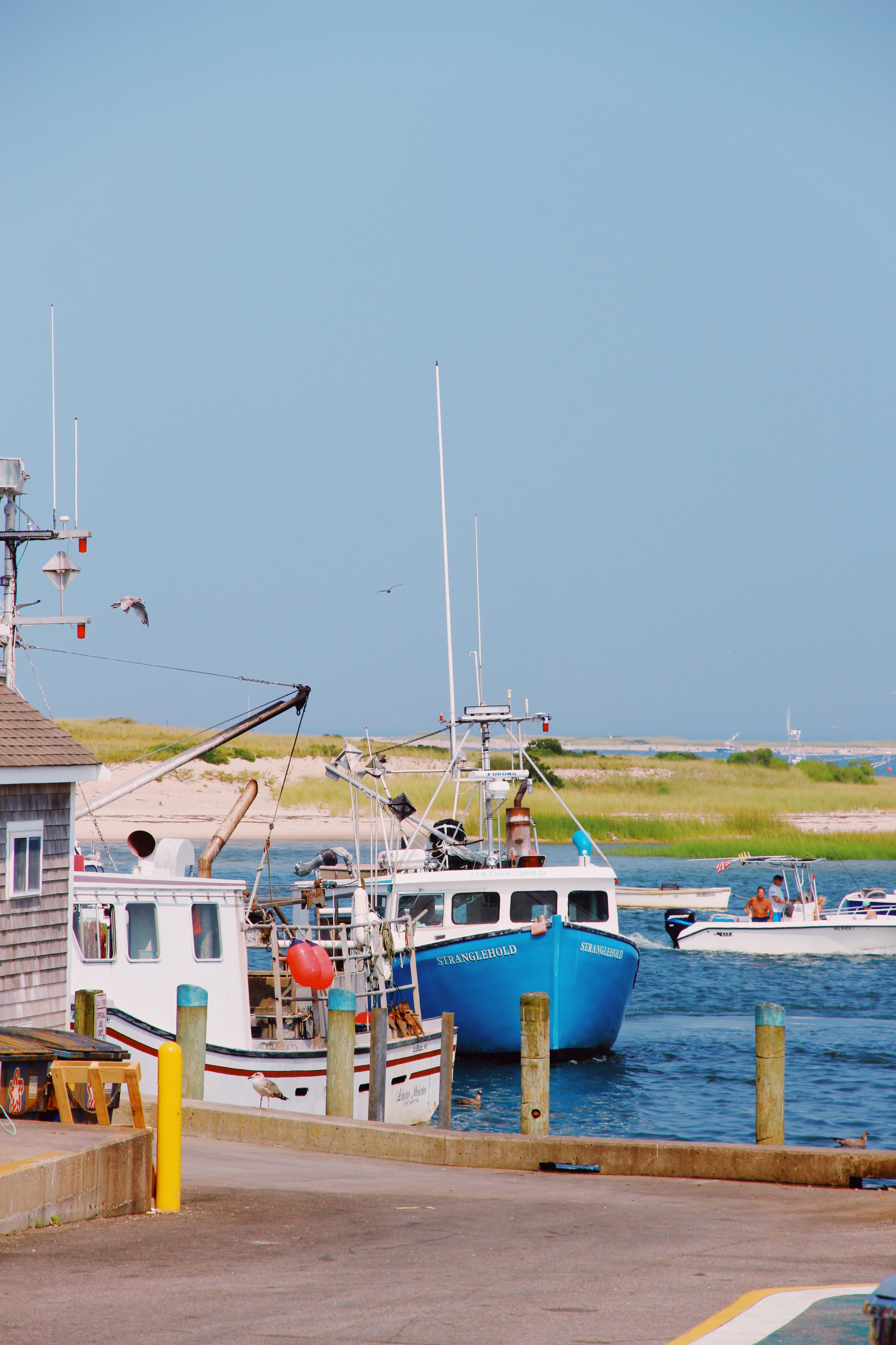 Cape Cod Holiday